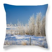 Frost-covered Trees In Snowy Field Throw Pillow