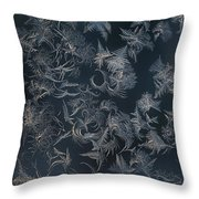 Frost Ferns Throw Pillow