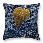 Frost On An Aspen Leaf Throw Pillow