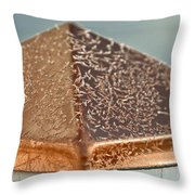 Frost On Copper Newel Throw Pillow