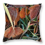 Frost On Leaves No. 2 Throw Pillow