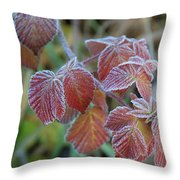 Frost On Leaves No. 3 Throw Pillow