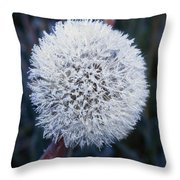 Frost On Mature Dandelion Blossom Throw Pillow