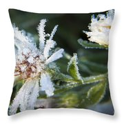 Frostbite Flower Throw Pillow by Darleen Stry