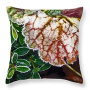Frosted Edges Throw Pillow
