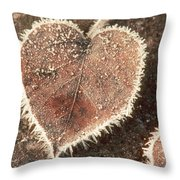 Frosted Fall Leaves Throw Pillow