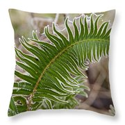 Frosted Fern Throw Pillow