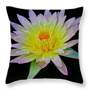 Frosted Lily Throw Pillow