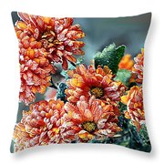 Frosted Mums Throw Pillow