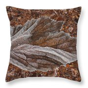 Frosted Raspberry Leaf Throw Pillow