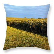 Frosted Soybeans Throw Pillow