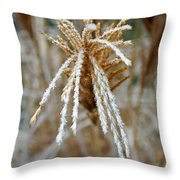 Frosty Fountain Grass Throw Pillow