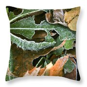 Frosty Leaves II Throw Pillow