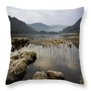 Frosty Winters Morning, Lower Lake Throw Pillow