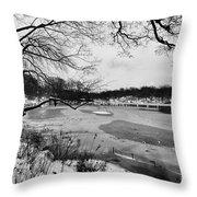 Frozen Central Park At Dusk Throw Pillow by John Farnan