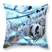 Frozen IIi Throw Pillow