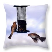 Frozen In Flight 1 Throw Pillow