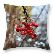 Frozen Mountain Ash Berries Throw Pillow