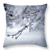 Frozen Path Throw Pillow