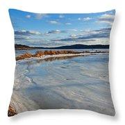 Frozen Shoreline Throw Pillow