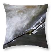 Frozen Twig Throw Pillow