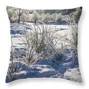 Frozen Winter Landscape Throw Pillow