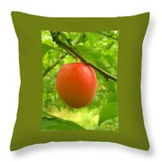 Fruit Plums Red Throw Pillow