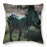 Fruit Stripes Throw Pillow