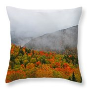 Fruits Loops In Crawford Notch Throw Pillow