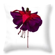 Fuchsia On White Throw Pillow by Dawn OConnor