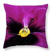 Fuchsia Pansy Throw Pillow