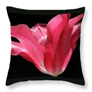 Full Bloom Pink Tulip Flower Throw Pillow