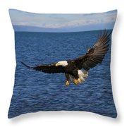 Full Flair Throw Pillow