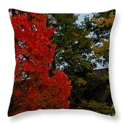 Full Moon Between The Trees Throw Pillow