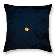 Full Moon On A Winter's Night Throw Pillow