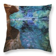 Fully Reflected Throw Pillow