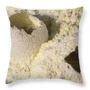 Fumarole Deposits In The Dallol Throw Pillow
