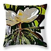 Funky Magnolia Throw Pillow