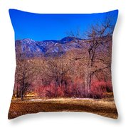 Furrowed Field At South Platte Park Throw Pillow