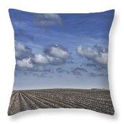 Furrows In A Texas Field Throw Pillow