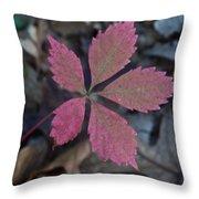 Fushia Leaf Throw Pillow