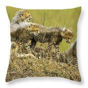 Fuzzy Babies Throw Pillow