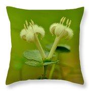 Fuzzy Blooms Throw Pillow