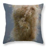 Fuzzy Cattail Throw Pillow