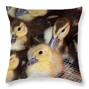 Fuzzy Ducklings Throw Pillow