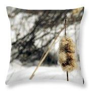 Fuzzy Throw Pillow