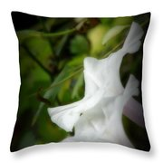 Gaily Throw Pillow