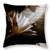 Galactica Throw Pillow