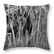 Gallinule In The Grass Throw Pillow