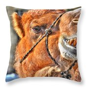 Gangsta Grillin This Camels Chillin Throw Pillow